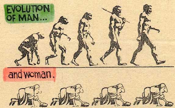evolution415.jpg