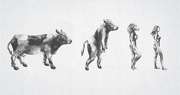 evolutionfemme.jpg