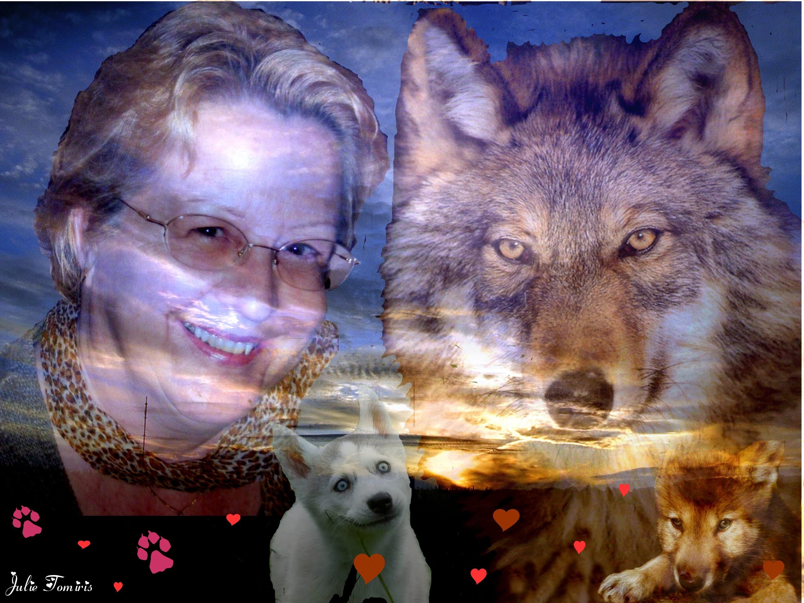 Le Loup....ce mal aimé ! dans Mes revoltes LAmour-du-loup1