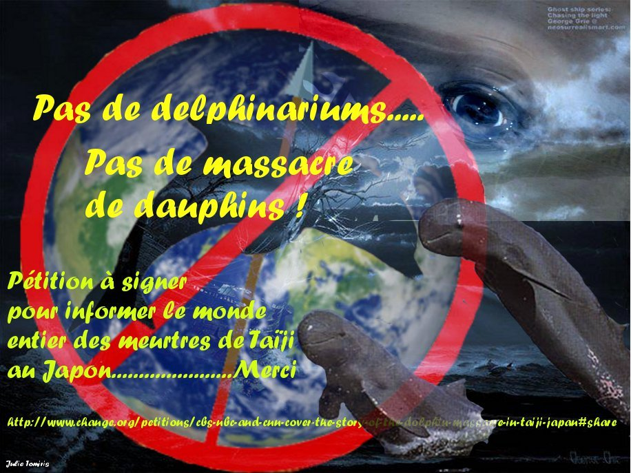 Deuil-de-nos-baleines31 dans Mes revoltes