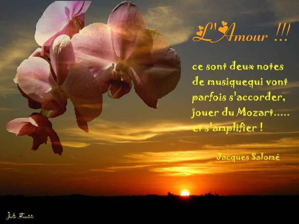 Amour en fleurs ! dans Pensees poetiques LAmour6-1024x768